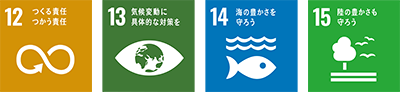 sdg_icon.png
